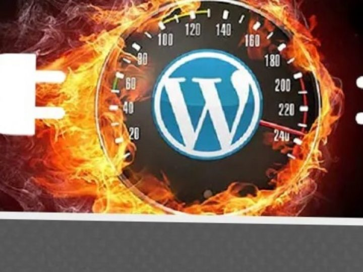 Important Factors to Consider Before Starting a WordPress Website