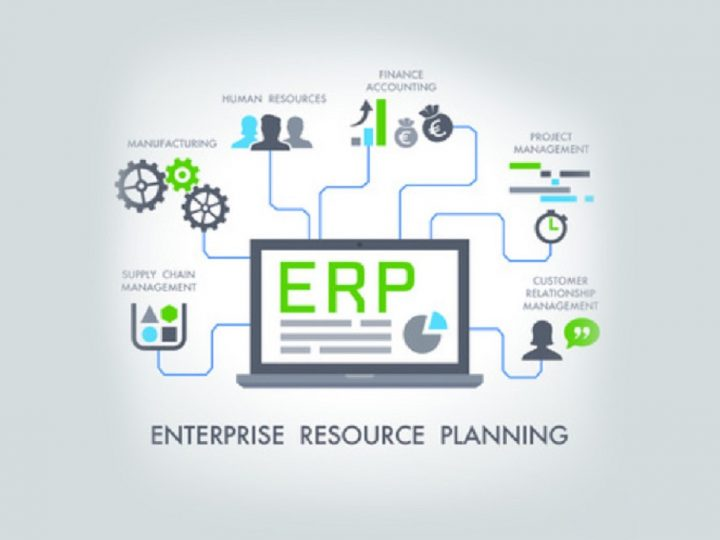 How does ERP software?